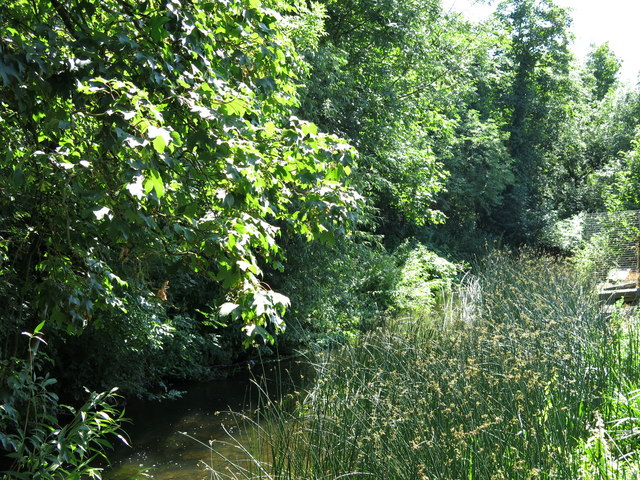 Artificial branch of the River Colne south of Thorney Mill Road