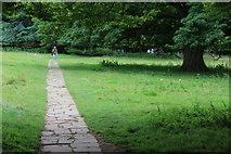ST5071 : Path to kitchen garden from ha-ha, Tyntesfield Park by M J Roscoe