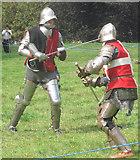 TL0506 : A sword fight on Blackbirds Moor, Boxmoor by Chris Reynolds