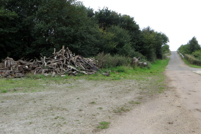 Woodpile by the bridleway into Bromham