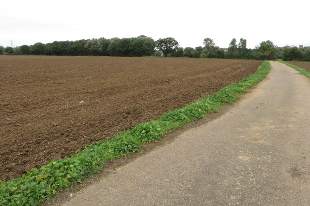 Bridleway towards Clapham