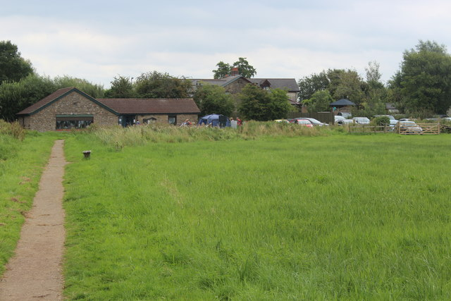 Meadow, Magor Marsh Nature Reserve
