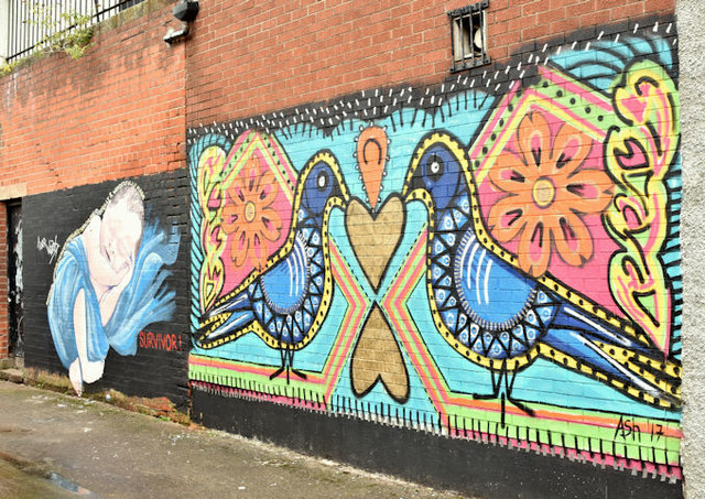 Street art, Laburnum Lane, Belfast - September 2017(3)