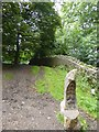 ST7475 : Carved seat and wall of the park, Dyrham Park by David Smith