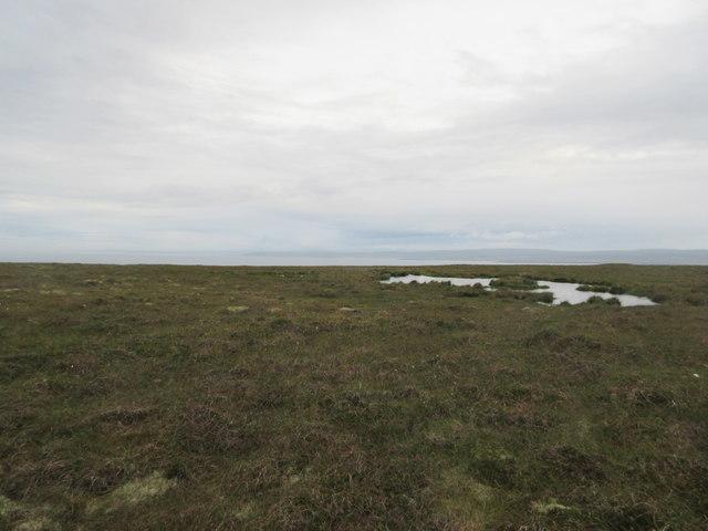 Moorland on Lamb Hoga