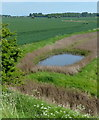 TA2220 : Farmland and pool next to the Humber by Mat Fascione