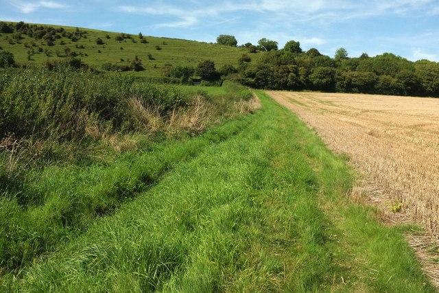 Towards Weam Common Hill