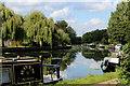 TQ3685 : River Lea Navigation beside Hackney Marsh (2) by Chris Heaton