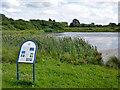TQ5191 : Main Lake, Bedfords Park by Robin Webster