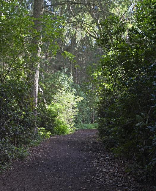 Royden Country Park