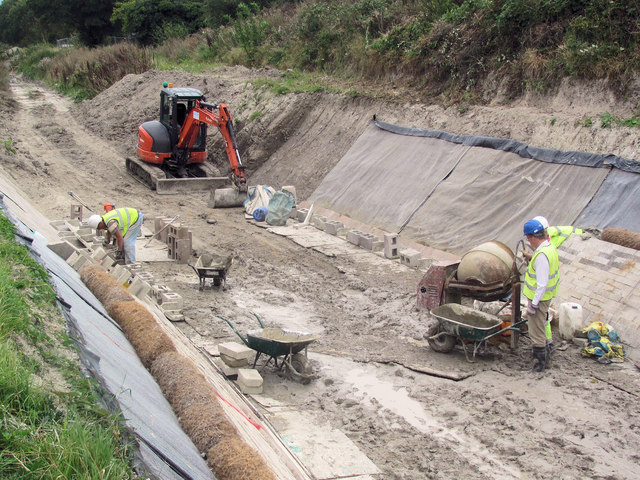 Lining the canal sides on the Wendover Arm