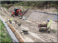 SP9012 : Lining the canal sides on the Wendover Arm by Chris Reynolds