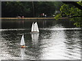 TQ0083 : Black Park Model Boat regatta - yachts by David Hawgood