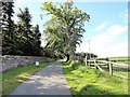 NZ0255 : View south along the entrance drive, Minsteracres by Robert Graham