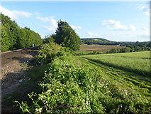 TQ5365 : Alongside the Eynsford to Swanley railway line by Marathon