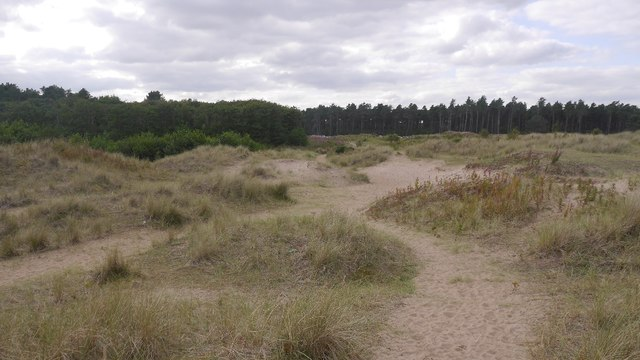 Car park to beach path, Tentsmuir