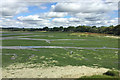 SZ0092 : Green and sandy mudflats, northeast shore of Holes Bay, Poole by Robin Stott
