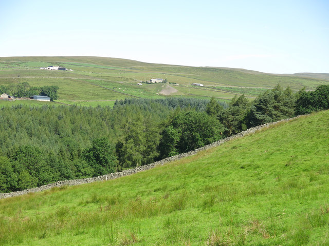 Field above Hudeshope Beck