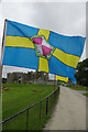 SN0403 : Pembrokeshire Flag by Stephen McKay