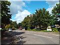 TQ0762 : Locke King Road, near Weybridge by Malc McDonald