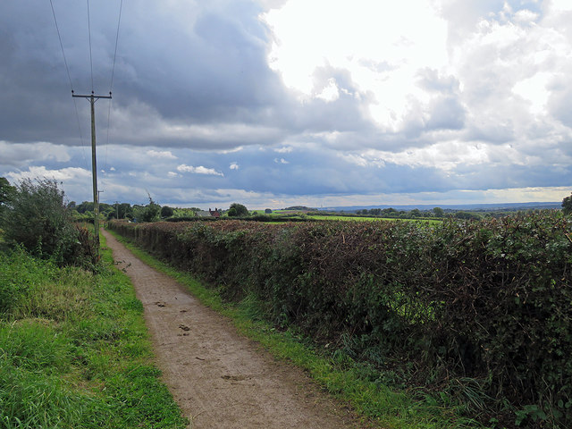 Between Swingate and Strelley