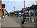 SK5837 : West Bridgford: flowery Central Avenue by John Sutton
