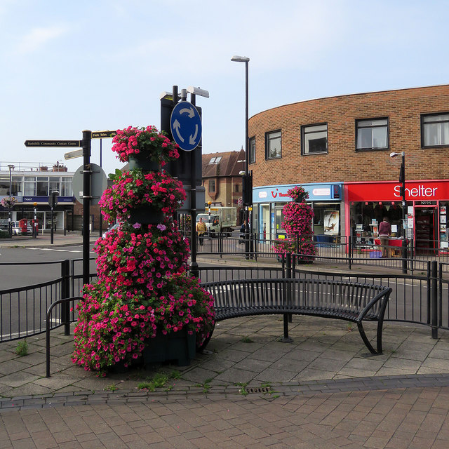 West Bridgford: petunias in Tudor Square