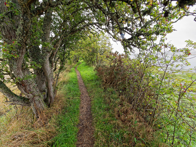 Path beside the Cromarty Firth