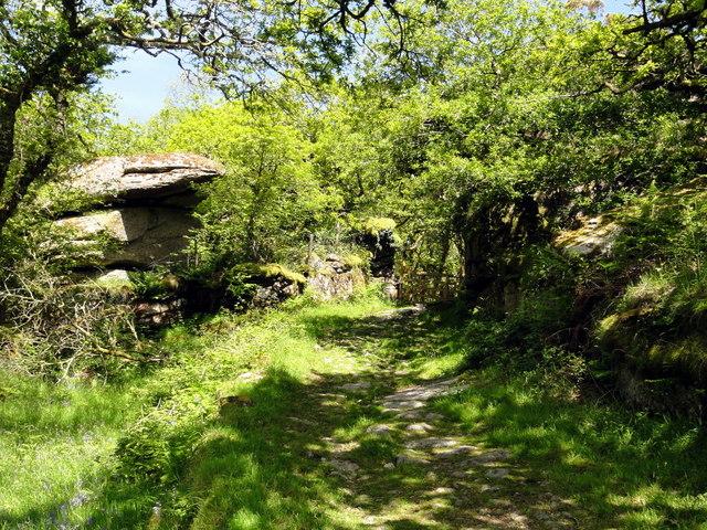 Bridleway past Hucken Tor