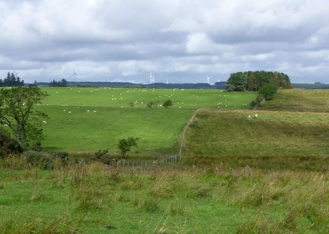 Rough and better pastures near Crookdene