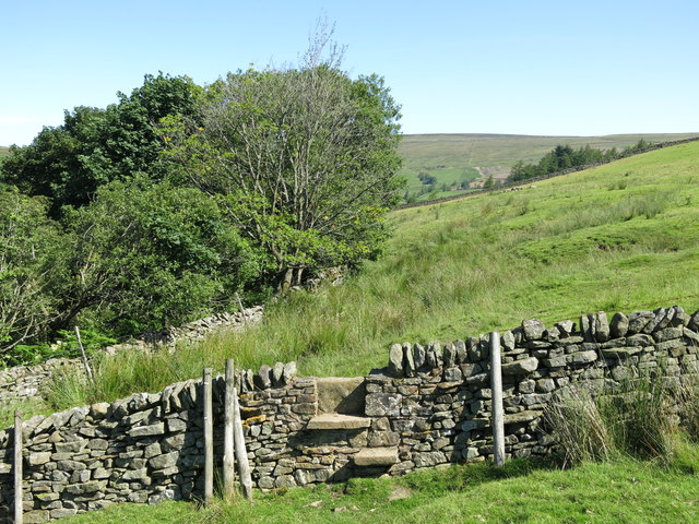 Stile in a dry stone wall south of Skears