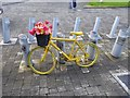 R5757 : Floral bicycle in Nicholas Street by Oliver Dixon