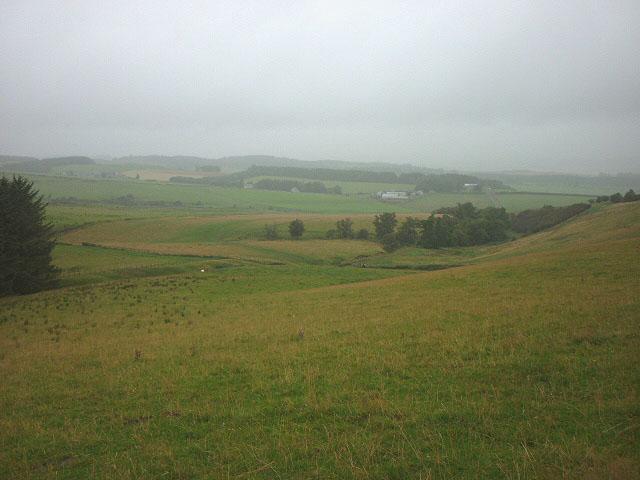 Pastureland on Ruberslaw