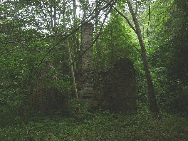 Ruined building in Denholm Dean
