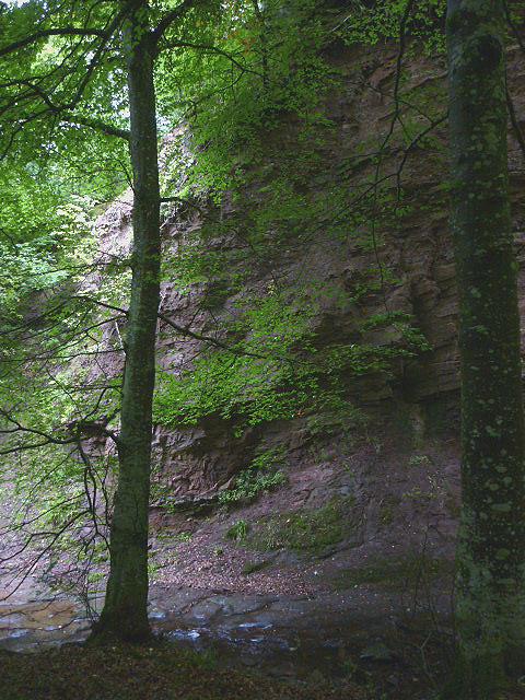 Crag in Denholm Dean