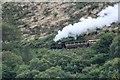 SN6979 : Vale of Rheidol train by Richard Hoare