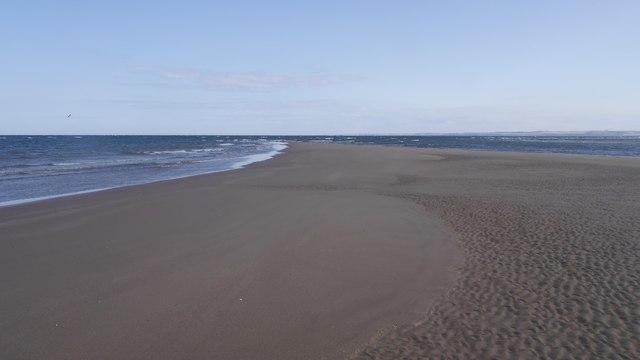 Sandbank, Tentsmuir
