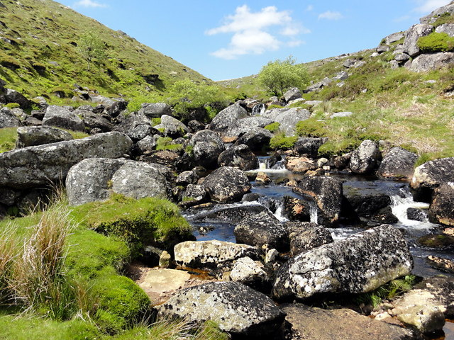 The East Dart River