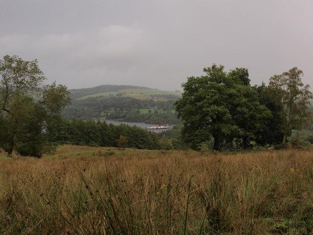 Stoneymollan fields