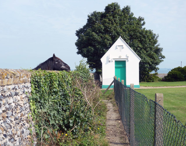 Horse, Hut and Footpath