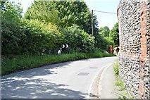 TL5136 : Royston Rd by N Chadwick