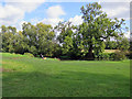 TL4355 : Fishing the Cam at Grantchester by John Sutton