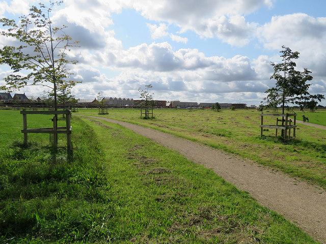 In Trumpington Meadows Nature Reserve