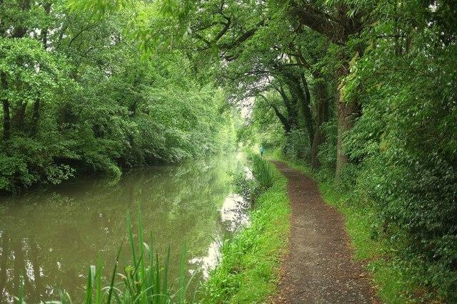 Stratford Canal near Lowsonford
