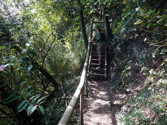 Path Through The Undercliff
