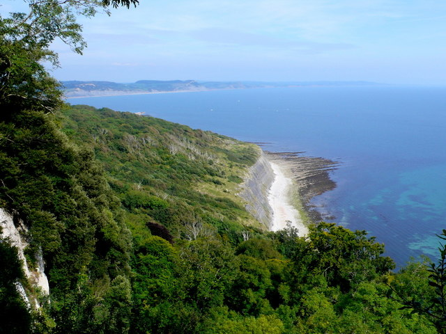 Pinhay Bay and the Undercliff from The Crimean Seat