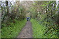 SX4661 : Tamar Valley Discovery Trail by N Chadwick