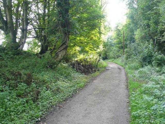 Path to Ware Cliffs