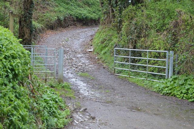 Gates, Blaxton Lane