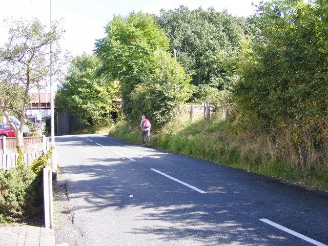 Batch Lane View